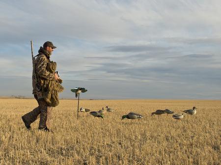 Duck Hunter Banque d'images