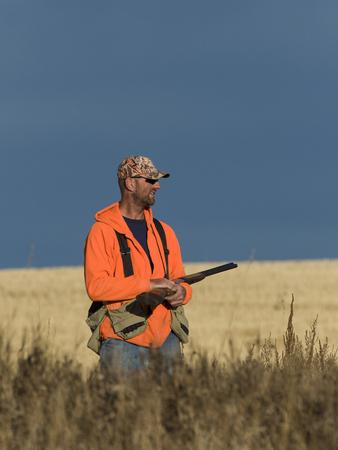 cazador: Hunter Bird