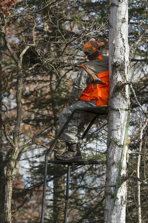 Deer Hunter photo