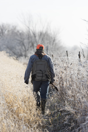 A young Hunter out chasing Pheasants in South Dakota Stock Photo