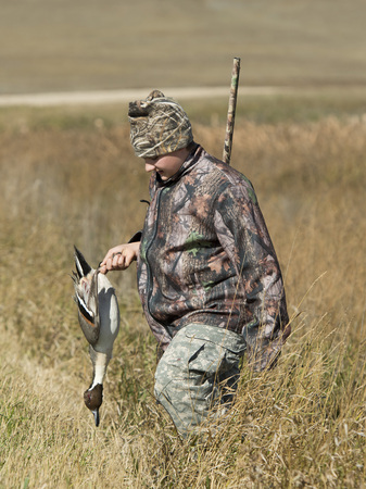 A young Duck Hunter in North Dakota with a Pintail