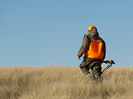 A young Pheasant Hunter in South Dakota Stockfoto