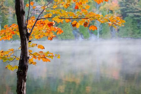 brings: Morning light brings autumn colors to life on the shores of Bubble Pond.  Acadia National Park, Maine, USA.