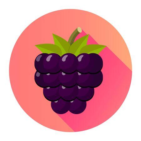 Bramble blackberry flat design icon