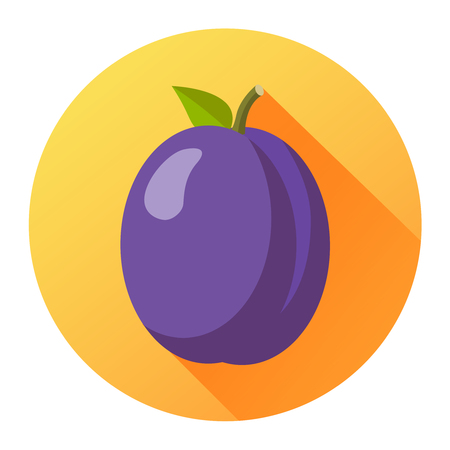 prune: Plum flat design isolated on a circle with shadow