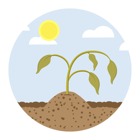 dying plans flat design icon 向量圖像
