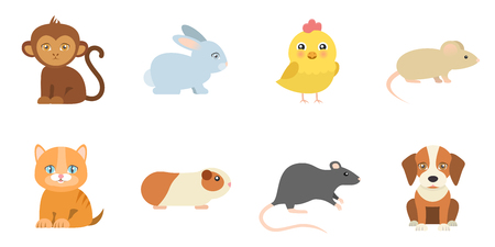 animal icons monkey bunny chicken mouse cat guinea pig rat dog flat design 向量圖像