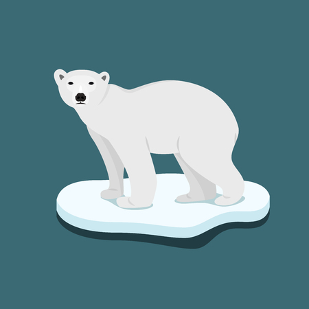 Ice bear on floe climate change catastrophe melting ice vector flat design Illustration