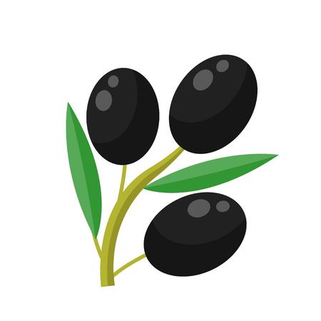 Olive flat design icon isolated on white background 向量圖像