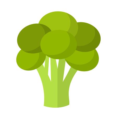 Broccoli flat design icon isolated on white background