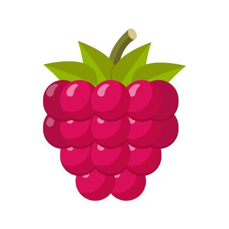 Raspberry flat design isolated on white background 向量圖像