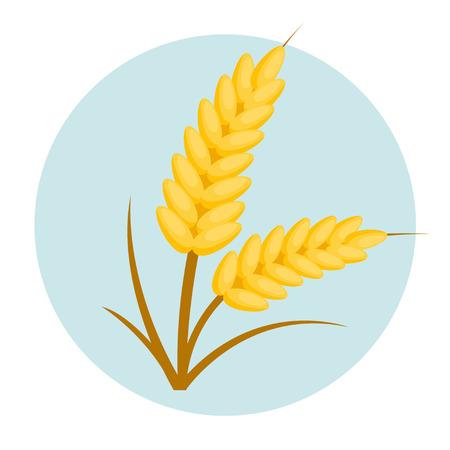 wheat flat design icon