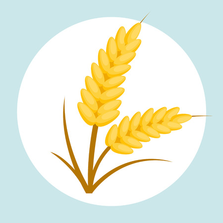Wheat flat design icon