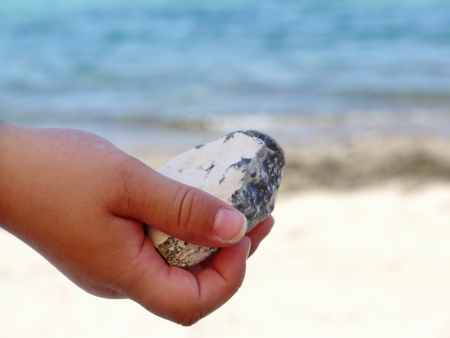 child hand holding a pebble beach