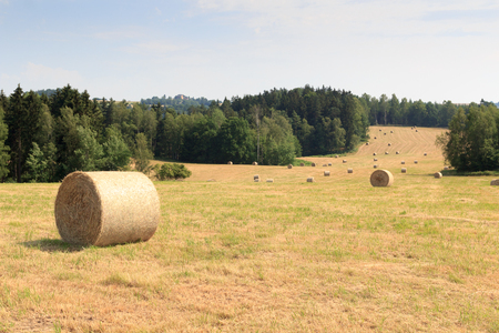 saxon: Hay bales on field in Saxon Switzerland, Germany