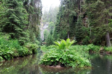barrage: Barrage Obere Schleuse at river Kirnitzsch in Hinterhermsdorf, Saxon Switzerland