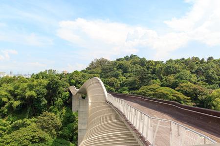 Henderson Waves brug op Mount Faber regenwoud, Singapore