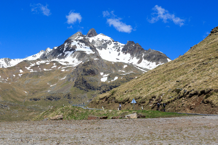 gavia: Mountain Monte Gavia and pass road with cyclists in Alps, Italy