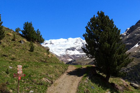 hiking path: Forni glacier mountain panorama, signpost and hiking path in Ortler Alps, Italy