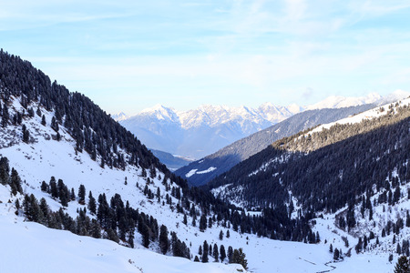 Mountain panorama and trees with snow in winter in Stubai Alps, Austria