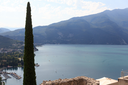 Lake Garda panorama and cypress tree in Riva del Garda, Italy Banco de Imagens