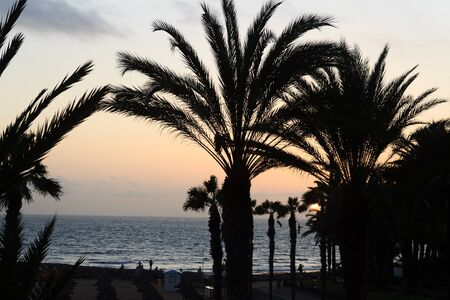 Sunset at beach and Atlantic Ocean panorama in holiday resort Playa de las Americas on Canary Island Tenerife, Spain