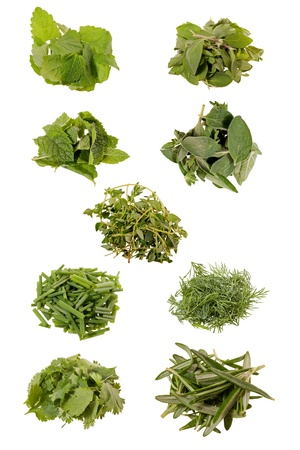 nine herbs isolated photo