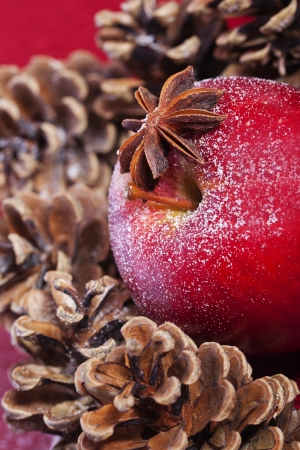 Winter red apple and pine cones christmas aroma Stock Photo