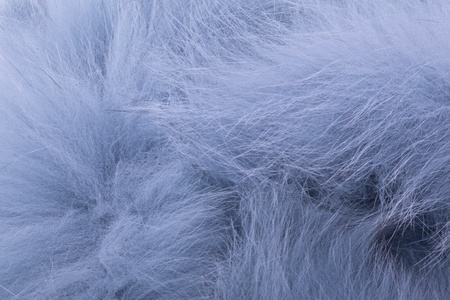 stole: Abstract closeup of luxury blue fur stole