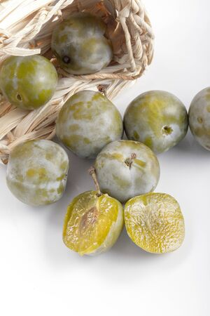 greengage green plum organic sweet delicious stone fruit