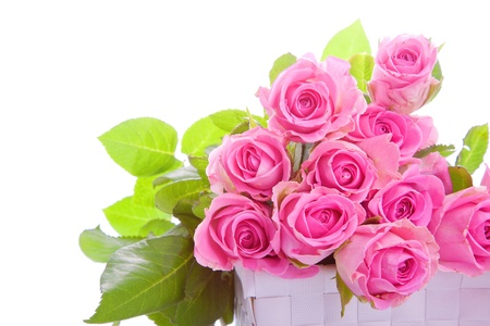 bouquet of pink roses in a gift box