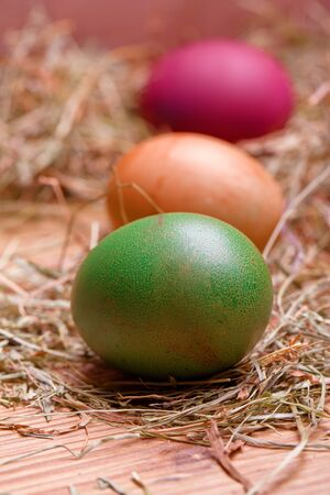colorful pastel easter eggs lying in a hay nest photo