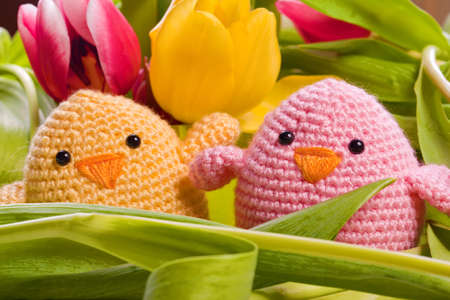 easter and spring decoration with chick and tulip flowers photo