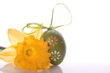 easter egg with pattern and yellow daffodils plant photo
