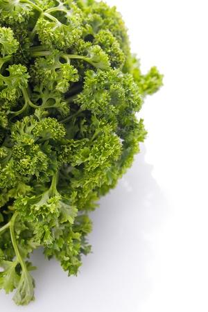 fresh raw parsley herb plant Stock Photo - 20325857