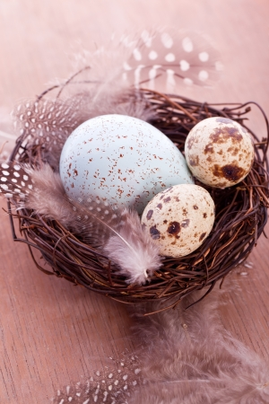 quail eggs and feather in a basket