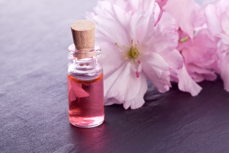 pink blossom flower and aroma  essence photo