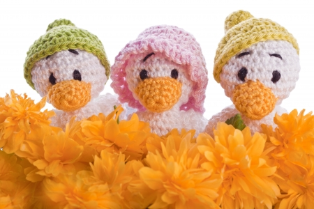 stuffed animal duck chicks with yellow flowers Stock Photo