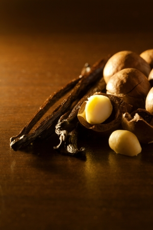 macadamia nut and vanilla bean food  ingredients Stock Photo - 21241627