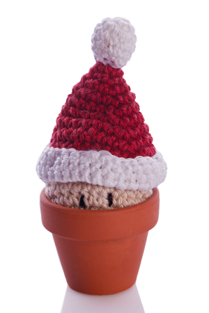 christmas gnome decoration figure in a flower pot photo