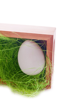 white easter egg in a wooden nest with green gras