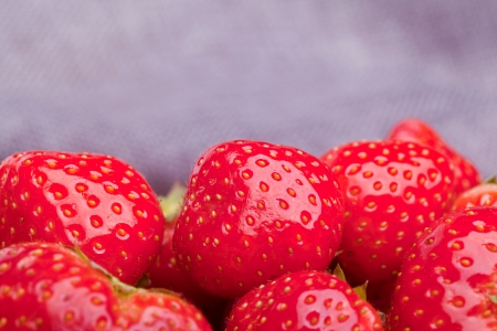 red strawberry on grey background