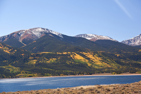 treeline: independence pass in fall colorado foliage