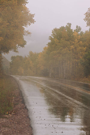 heavy rain on the road in Autumn photo