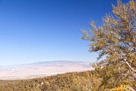 view on spring mountains nevada  photo