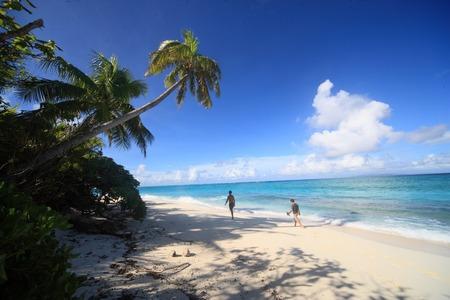palm lined: Nanuku Levu, Fiji-Inseln, Fidschi, Ozeanien
