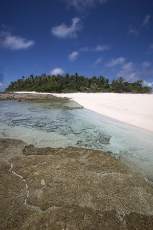 palm lined: Fiji Islands, Oceania, Australasian