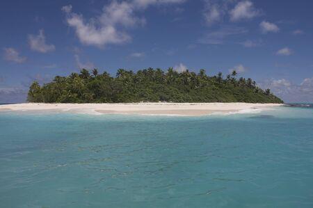 palm lined: Fiji Islands, Ozeania, Australasian
