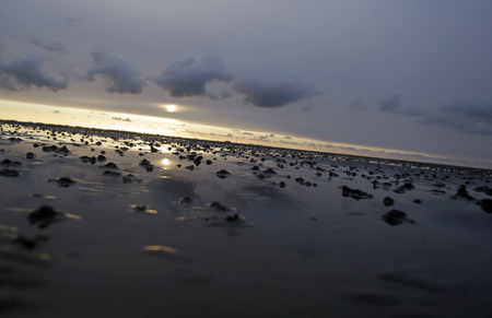 Wadden Sea Schleswig Holstein Germany