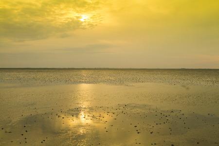 deutschland: Wattenmeer, Schleswig-Holstein, Deutschland